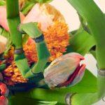 Des bouquets, toujours des bouquets à l'école des fleuristes #5